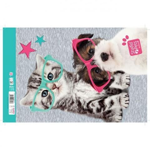 Blok rysunkowy Studio Pets - kotek i piesek