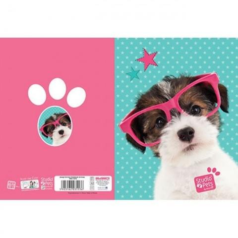 Zeszyt 32kart. linie Studio Pets - kotek i piesek