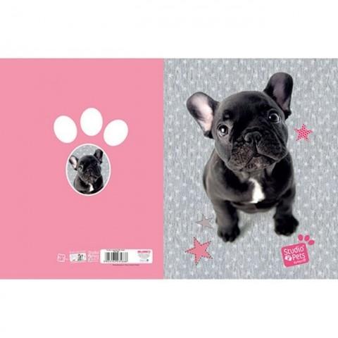 Teczka z gumką Studio Pets - Buldog francuski