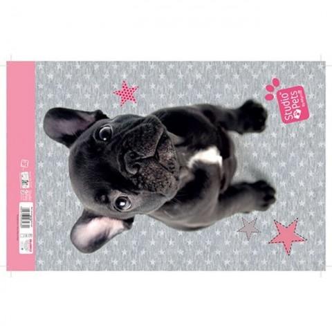 Blok rysunkowy Studio Pets - Buldog francuski