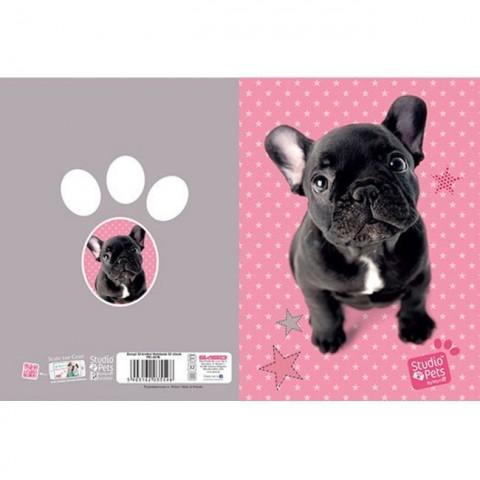 Zeszyt 32kart. kratka Studio Pets - Buldog francuski