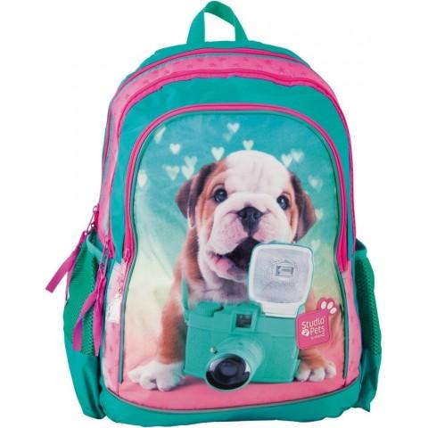 Plecak szkolny Studio Pets z buldogiem