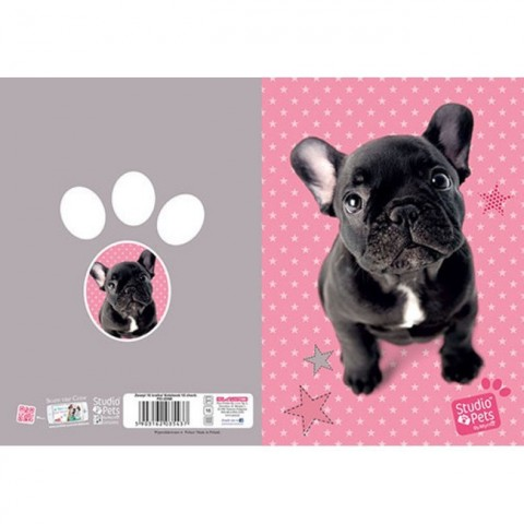 Zeszyt 16kart. kratka Studio Pets - Buldog francuski