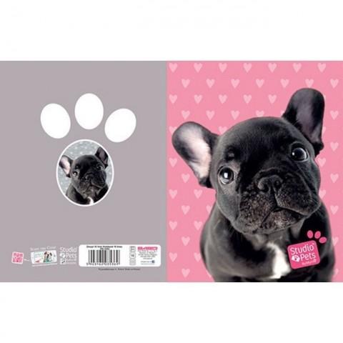 Zeszyt 16kart. linie Studio Pets - Buldog francuski