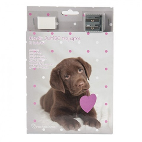 Kredki Jumbo z psem brązowy labrador